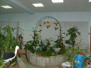 зимний сад 1